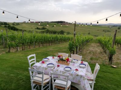 Dinner in the Vineyard private villa